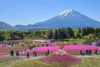 La primavera en Japón (Haru)