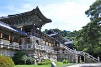 Japón y Corea completo 13 días / 12 noches