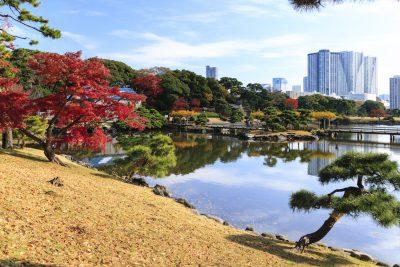 Hamarikyu- Teien, Jardin Japones