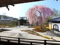 El templo de Kodaiji