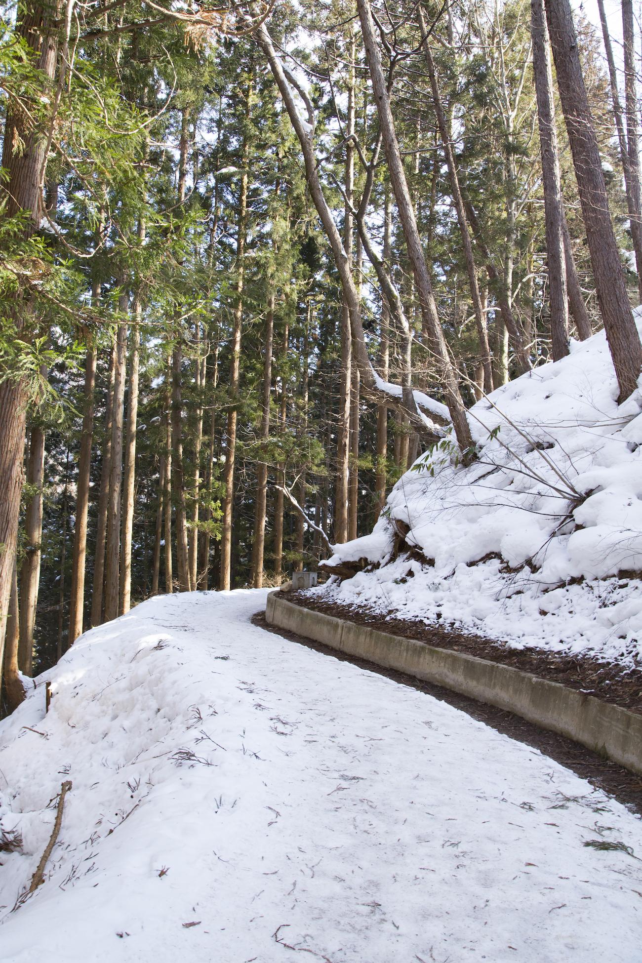 Informaciones Turísticas - Nagano -