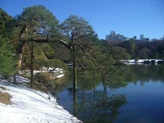 La nieve en invierno, Tokio