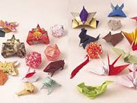 Origami : Papiroflexia