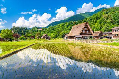 Takayama, Nagano y Aples japoneses