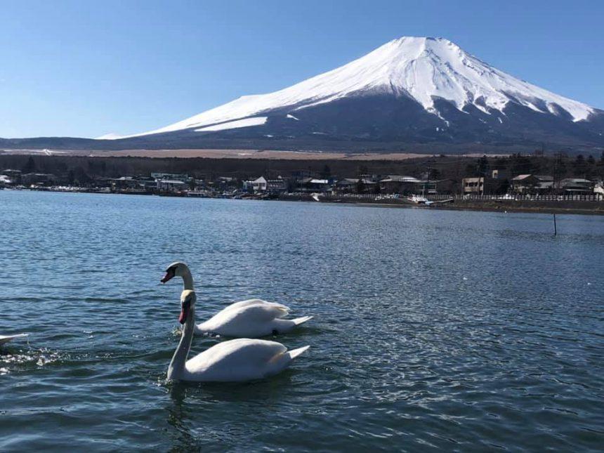 El Patrimonio de la humanidad del Monte Fuji